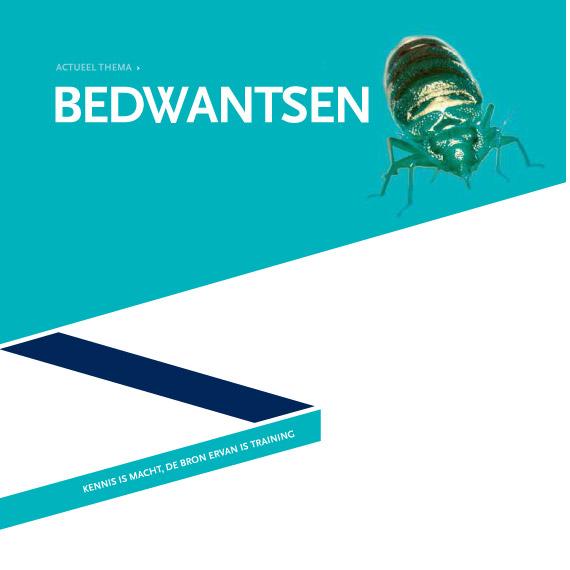 Bedbug-img